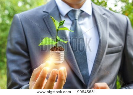 Businessman Holding Light From Sprout, Green Energy Concept.