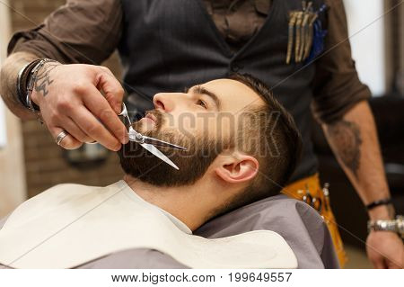 Barber make beard haircut with scissors in barbershop, closeup of client's head. Hairstyle in barbershop.