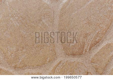 Decorative stone tile interior decoration in eco-style