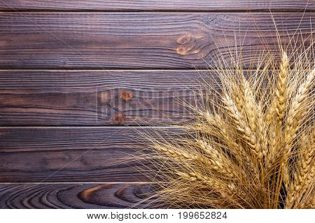 Close-up view of ripe wheat spikelets on rural wooden table