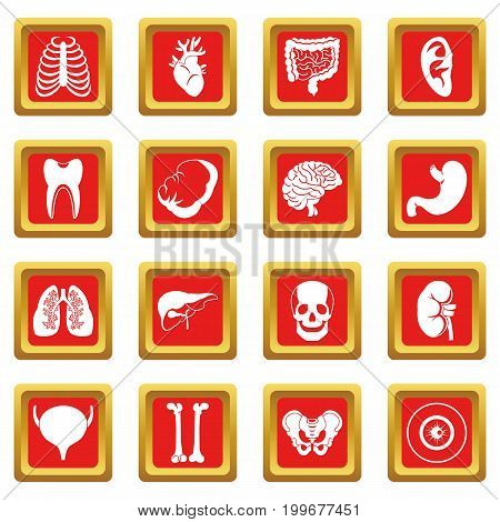 Human organs icons set in red color isolated vector illustration for web and any design