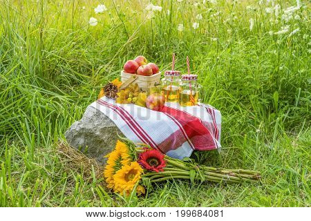Beautiful Country Picnic In A Field Full Of Grasses And White Wildflowers. Basket Of Apples, Juice A