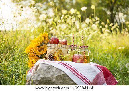 Basket Of Red Apples, Juice, Pear, Pinecone And Sunflowers On A Simple Cloth In A Field Of Flowers L