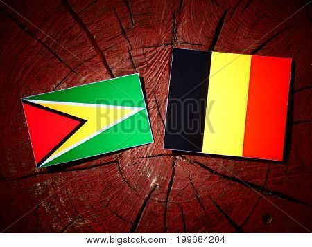 Guyana Flag With Belgian Flag On A Tree Stump Isolated