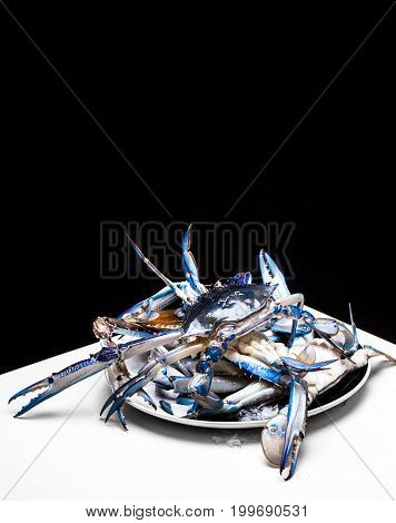 Fresh Blue swimmer crab on black background