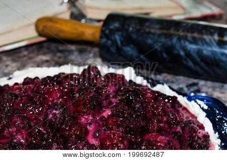 Homegrown juicy blackberries coated in sugar in unbaked pie crust.