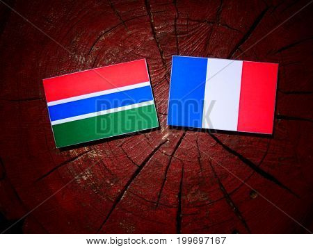 Gambian Flag With French Flag On A Tree Stump Isolated