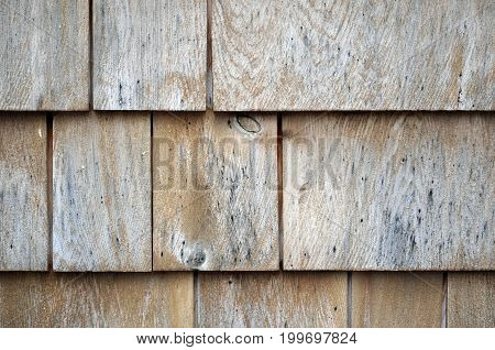 Weathered Shingles