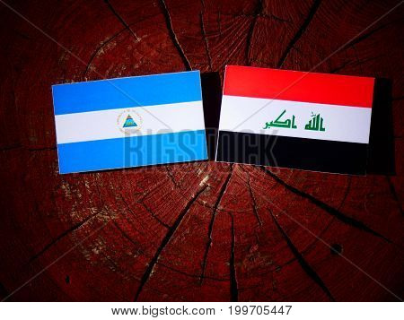 Nicaraguan Flag With Iraqi Flag On A Tree Stump Isolated