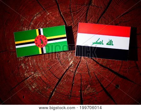 Dominica Flag With Iraqi Flag On A Tree Stump Isolated