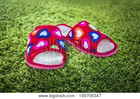 Pink Slippers On Green Doormat Background