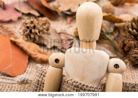 Wooden doll posing amid autumn leaves background