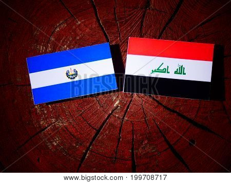 El Salvadoran Flag With Iraqi Flag On A Tree Stump Isolated