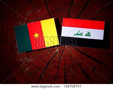 Cameroon Flag With Iraqi Flag On A Tree Stump Isolated
