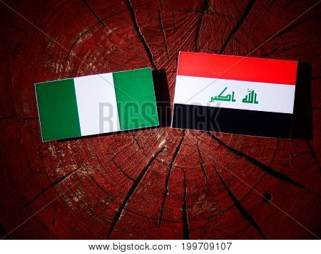 Nigerian Flag With Iraqi Flag On A Tree Stump Isolated