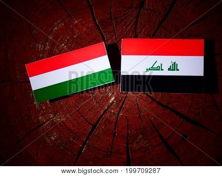 Hungarian Flag With Iraqi Flag On A Tree Stump Isolated