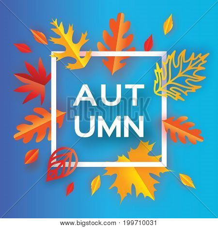 Beautiful Autumn paper cut leaves. Hello Autumn. September flyer template. Square frame. Space for text. Origami Foliage. Maple, oak. Fall poster background. Outline. Vector illustration