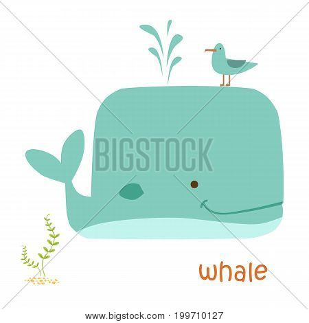 Whale isolated. Drawing whale for a child