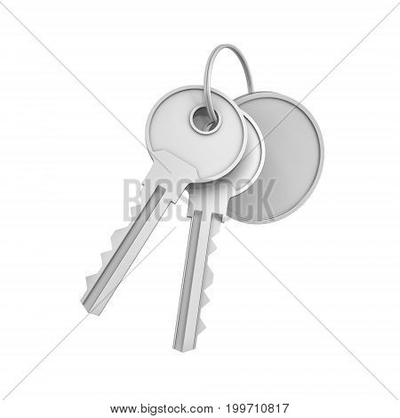 3d rendering of two isolated silver keys on a key ring with a blank round medal behind. Safety and protection. Keep information locked. Password protected entry.