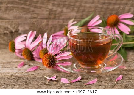 Cup of echinacea tea on old wooden table.
