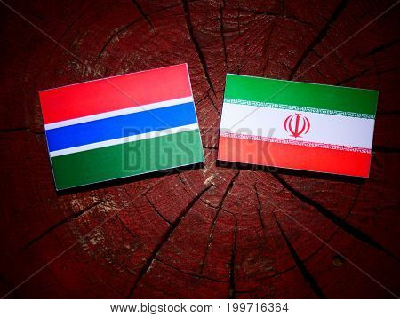 Gambian Flag With Iranian Flag On A Tree Stump Isolated