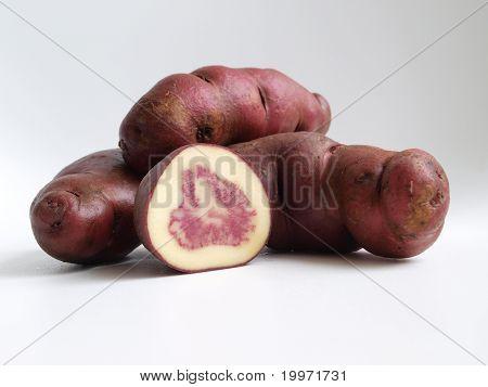 Native potatoe tuber from Andes,Peru