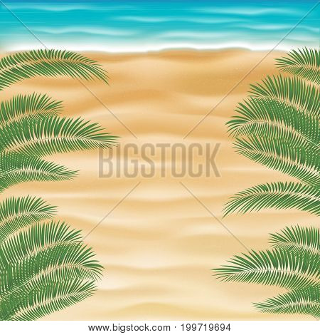top view sea sand beach with coconut tree leaf