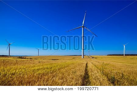 Windmills for the production of electrical energy ecology preserving nature
