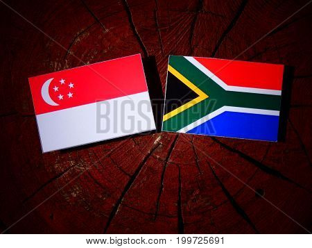 Singaporean Flag With South African Flag On A Tree Stump Isolated