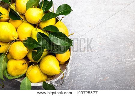 Yellow Pear In Grey Basket In Grey Background. Harvest. Top View. Full Box Of Pears. Copy Space.