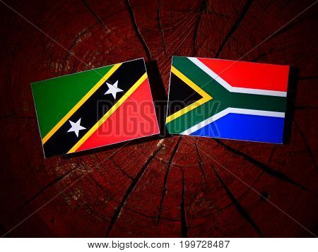 Saint Kitts And Nevis Flag With South African Flag On A Tree Stump Isolated