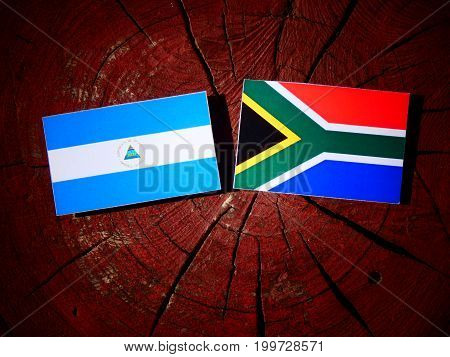 Nicaraguan Flag With South African Flag On A Tree Stump Isolated
