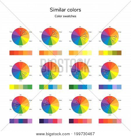 vector illustration of color circle, analogous color, similar color, infographics, swatches
