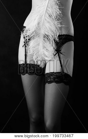 female naked body covering with feather on black background, monochrome