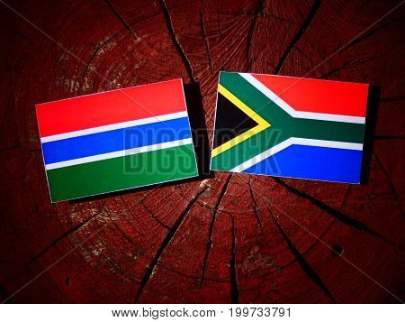 Gambian Flag With South African Flag On A Tree Stump Isolated