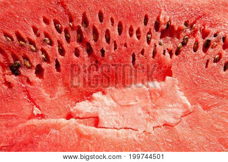 Detailed closeup of red watermelon. Food background.