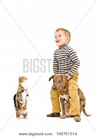 Happy kid playing with a puppy and cat, isolated on white background