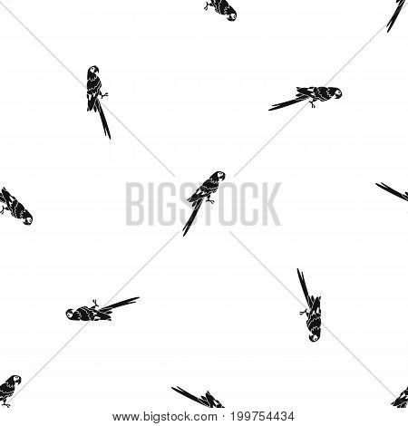 Brazilian parrot pattern repeat seamless in black color for any design. Vector geometric illustration