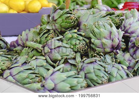 Fresh artichoke at market