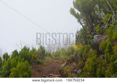 Mountain path. Misty landscape. View of mountains on the route Pico Ruivo - Encumeada, Madeira Island, Portugal, Europe.