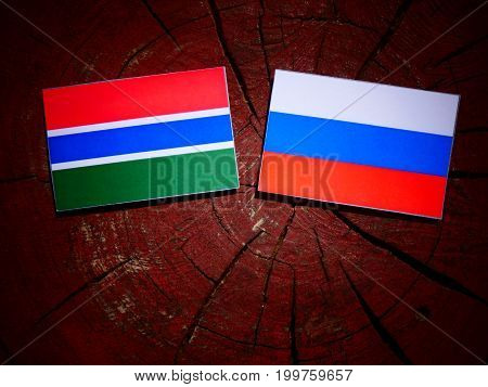 Gambian Flag With Russian Flag On A Tree Stump Isolated