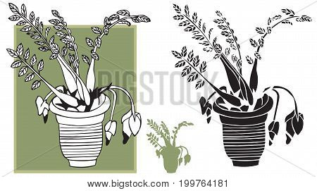 illustration on white background silhouette and flower room in the pot drawing