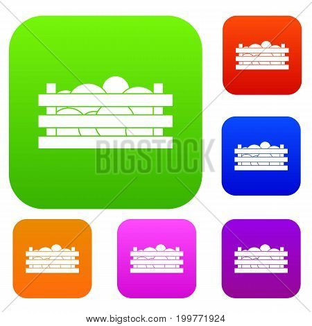 Watermelons in wooden crate set icon in different colors isolated vector illustration. Premium collection