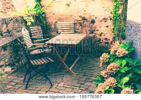 Flowery farm backyard with wooden table and chairs at sunny summer day