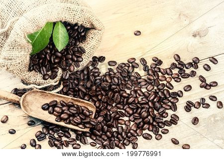 Roasted coffee beans with old wooden scoop. Food and drink background