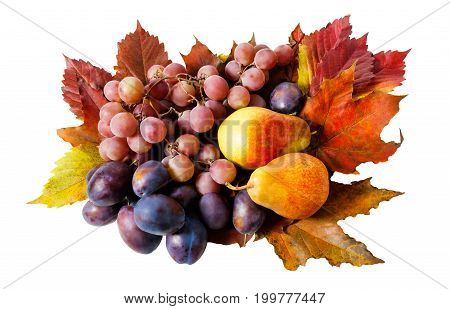 Fruits and autumn leaves isolated on white background