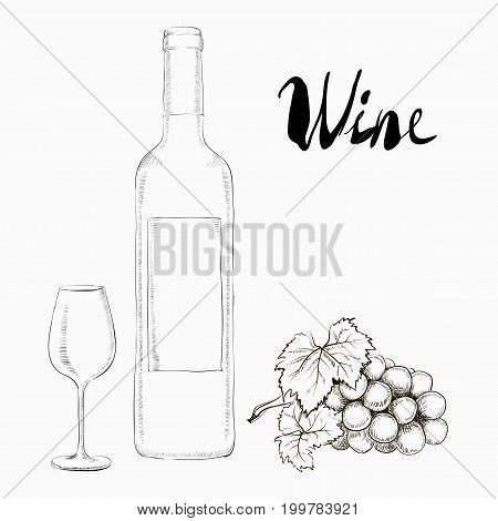 Hand Drawn Illustration Wine Glass and Bottle With a bunch of grapes