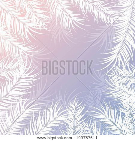 Tropical design with white palm leaves and plants on gradient background vector illustration