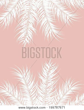 Tropical design with white palm leaves and plants on pink background vector illustration
