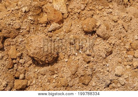 Closeup To Crumbly Soil On Ground Background